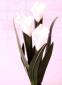 供应decorative flameless wax candle